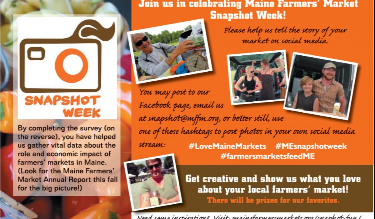 Snapshot Week card