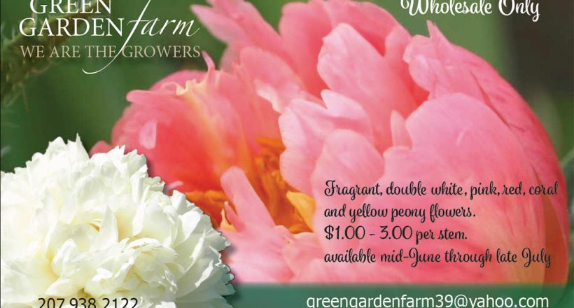 Announcing Spring with a postcard at Green Garden Farm